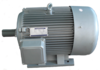 Electrical AC Motor in abudhabi