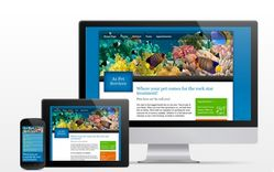 Website Builders from only $29.94/mo!