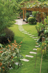 Landscaping & Garden ...