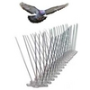 BIRD SPIKES from Benchmark Pest Control Services & Trading Llc Dubai, UNITED ARAB EMIRATES