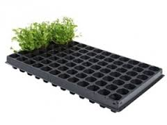 PACKS TRAY FOR PLANT ...