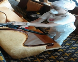 Upholstery Extractio ...