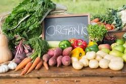 ORGANIC FOOD SUPPLIERS IN UAE from The Organic Syndicate  Ras Al Khaimah,