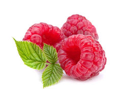 Raspberry Suppliers  from The Organic Syndicate  Ras Al Khaimah,