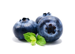 blueberry suppliers from The Organic Syndicate  Ras Al Khaimah,