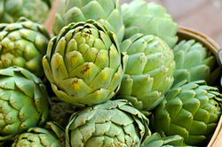 Artichoke suppliers from The Organic Syndicate  Ras Al Khaimah,