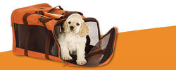 Marketplace for Pet relocation UAE