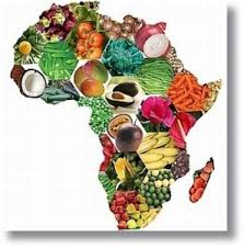Marketplace for Food importer & exporter africa UAE