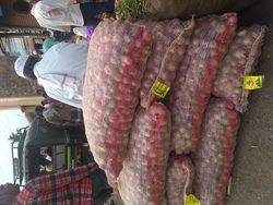 Red onion from Vebindia  Karnataka,