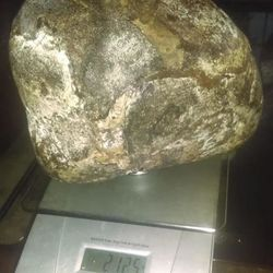 Ambergris from  ,