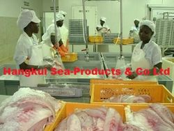 Offers and Deals in UAE For Frozen nile perch fish fillets