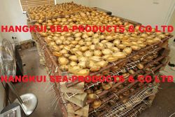 Dried Abalones from  ,