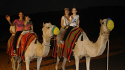 camel safari in dubai