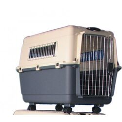 PLASTIC TRANSPORTER PET CARRIER from Petcare For Pets Trading Llc  Abu Dhabi,