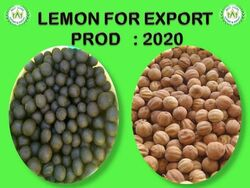 Marketplace for   lemons for export production 2020 UAE