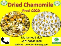chamomile for import and export