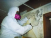 Mold Remediation DUBAI, UAE
